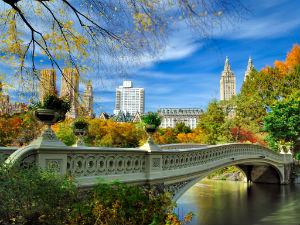 Bow Bridge dentro a Central Park
