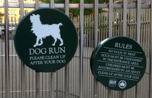Dog run a New York