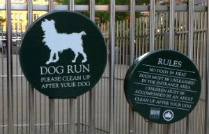 Dog run a New York