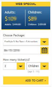 Screenshot, acquisto FreeStyle Pass New York