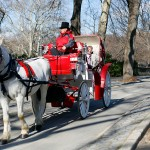 Giro in carrozza a Central Park