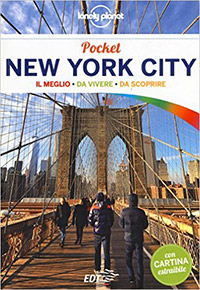guida su new york edizione pocket by lonely planet