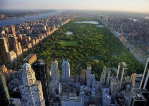 maggio a new york