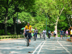 Noleggio bici Central Park