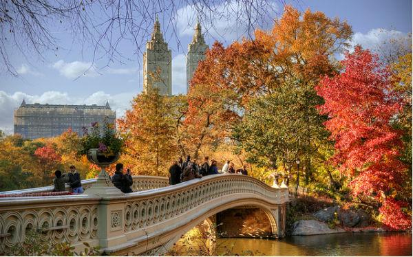 Novembre a New York: foliage a Central Park