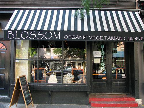 blosson cucina vegetariana