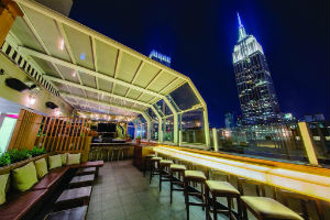 Rooftop Bar, The Strand New York