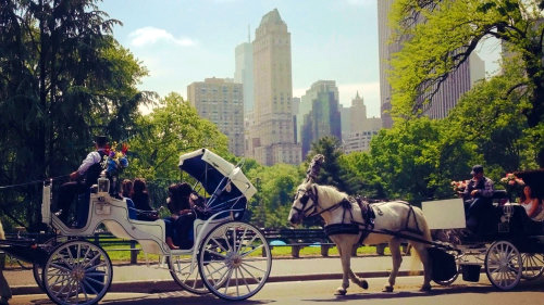 tour di central park in carrozza a cavallo