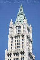 Il Woolworth Building di New York